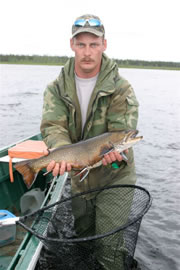 Quebec Walleye