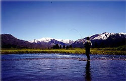 Wyoming hunting and fishing guide